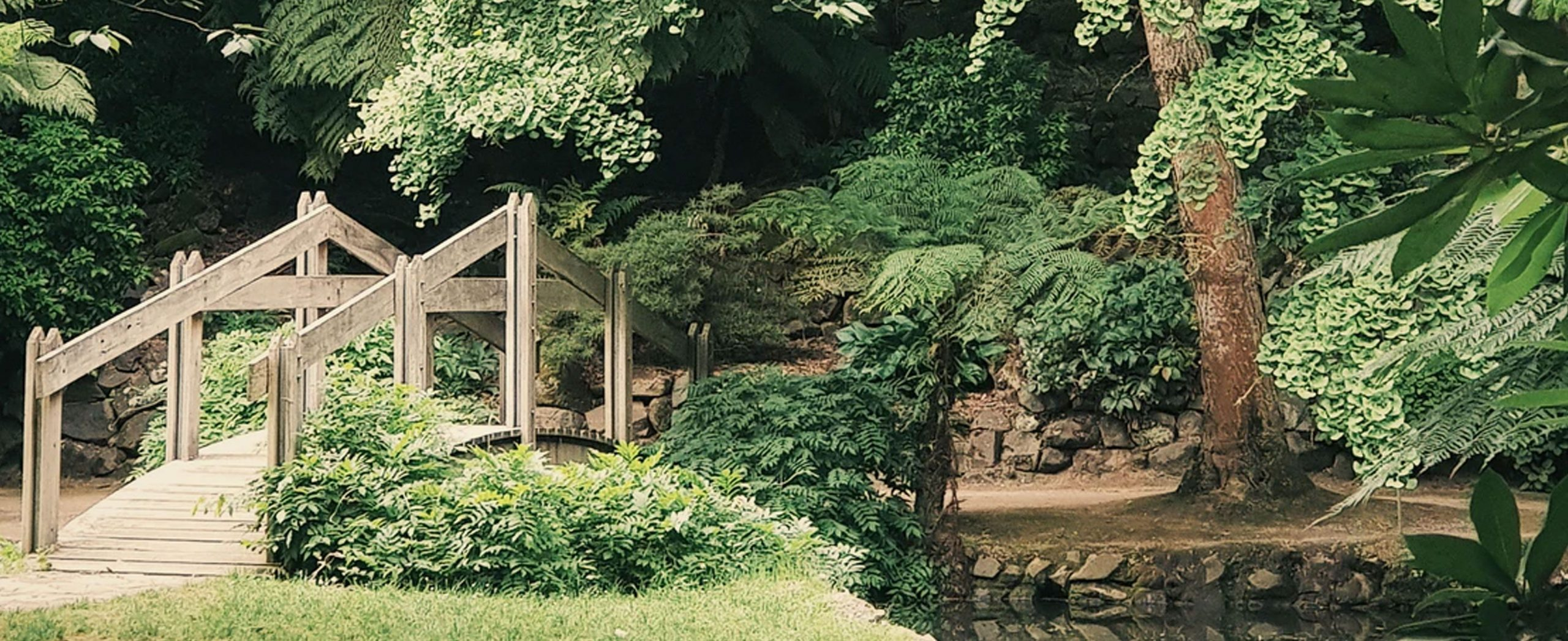 landscaper-testimonials-background