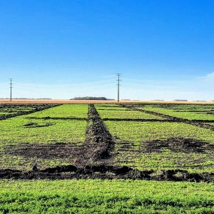 AG drainage services