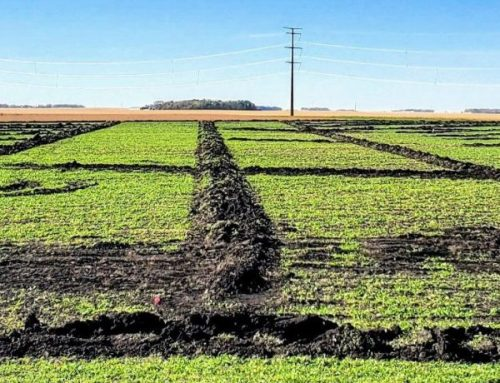 How to Hire the Right Ag Drainage Company